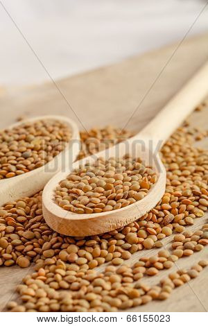 Spoons And Lentils