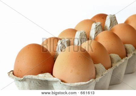 Close-up Eggs