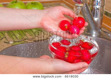 The girl washes a radish