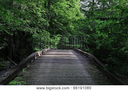 Wood bridge in Smoky Mountains