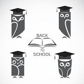 Vector image of an owl with college hat and book isolated on white background poster