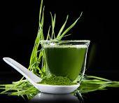 Young barley and chlorella spirulina. Detox superfood. poster
