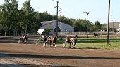 Horse racing in Estonia. poster