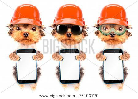 dog  dressed as builder holding phone with empty white screen poster