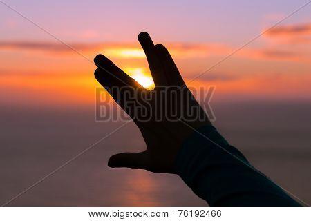 One Hand Making A Vulcan Salute