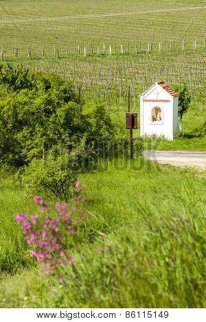 God's torture near Hnanice with spring vineyard, Southern Moravia, Czech Republic