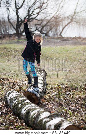 Birch balancing