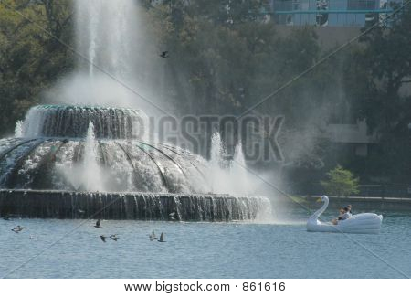 city fountain  swan boat