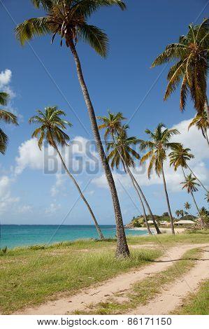 Sea View In Antigua