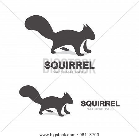 Gray squirrel logo