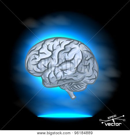 Brain imagination