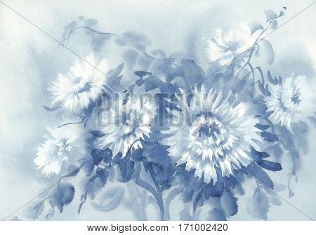 Bouquet of white asters watercolor background. Birthday card. Summer colors.