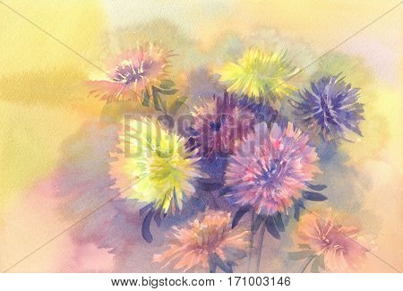 Bouquet of color asters watercolor background. Birthday card. Summer colors.