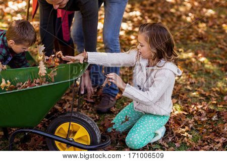Children picking up autumn leaves with parents at park