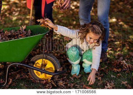 Girl picking up autumn leaves with parents at park