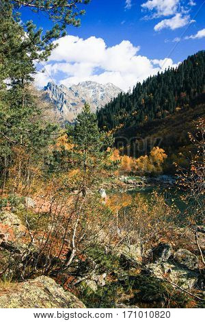 Mountain Landscape Coniferous Forest And Lake In The Fall Season.