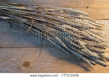 sheaf of wheat on the old wooden desk