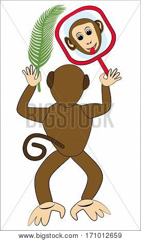 Monkey frolic with mirror. Monkey face in mirror. Monkey holding a palm leaf. Monkey from the back. Funny monkey illustration. Monkey children illustration. Vector monkey isolated.