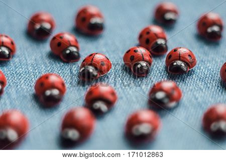 A group of wooden ladybugs. Concept of individuals in the crowd