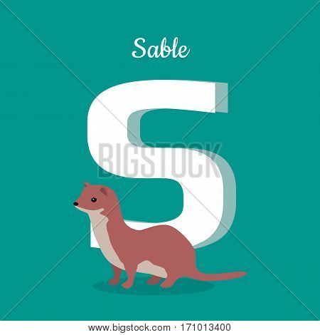 Animal alphabet vector concept. Flat style. Zoo ABC with wild animal. Sable standing on blue background, letter S behind. Educational glossary. For children s books, textbooks illustrating