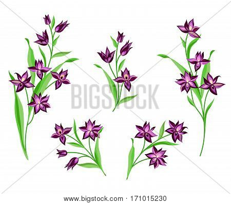 Flower Set. Floral Bouquet Summer Decorative Collection For Greeting Card Nature Design