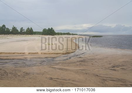 Sand And Vegetation In Lagoa Do Patos Lake