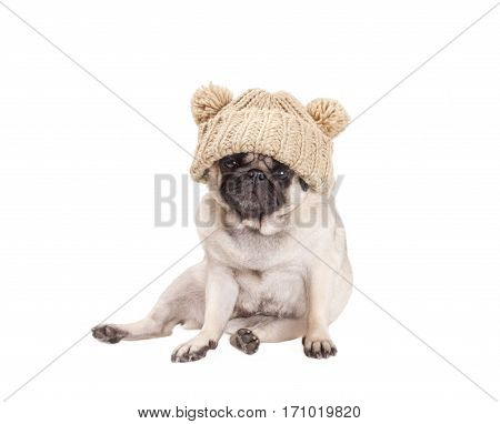 sweet pug puppy dog sitting down and wearing a knitted hat with pompoms isolated on white background