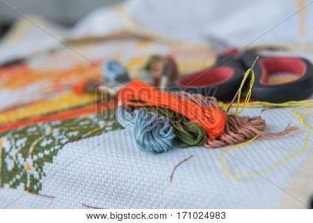 closeup  colorful thread for cross- stitch embroidery.