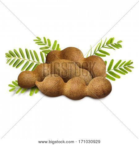 Tamarind with leaves on white background