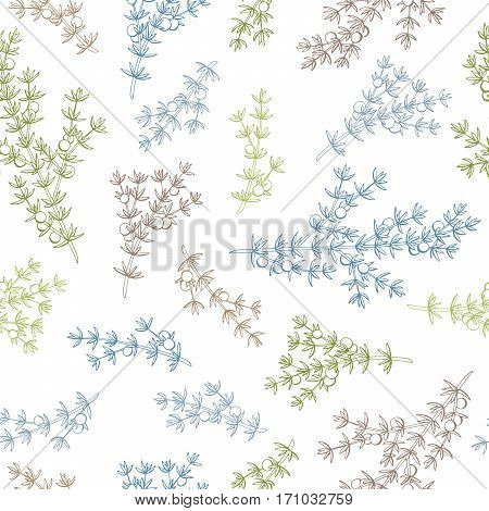 Juniper graphic color seamless pattern sketch illustration vector