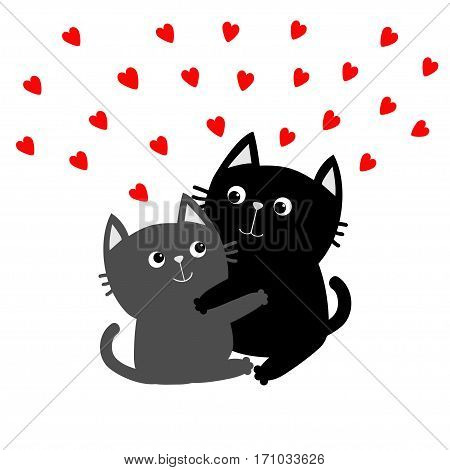 Black Gray Cat hugging couple family. Red hearts Hug embrace cuddle. Happy Valentines day Greeting card. Cute funny cartoon character. Kitty Whisker Baby pet White background. Isolated. Flat Vector