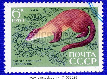 USSR - CIRCA 1970: Postage stamp printed in USSR with a picture of  Yellow-throated marten (lat. Martes flavigula), of the series