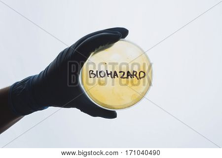Word biohazard on Petri dish with bacterial infection test sample. Medical test for dangerous intestinal infectious disease. Contaminated water food concept. Disease outbreak control prevention danger