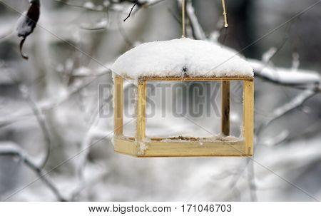 Empty bird feeder hanging on a branch, snowing.