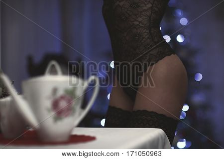Sexy Attractive Brunette Woman Posing In Fashionable Lingerie