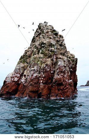 Islas Ballestas - Ballestas Island, Pisco Perú