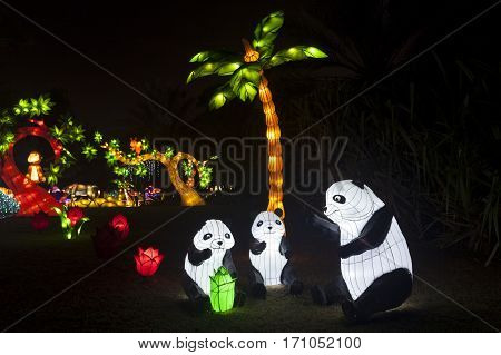 DUBAI UAE - DEC 6 2016: Panda family at the Dubai Garden Glow theme park illuminated at night. United Arab Emirates Middle East
