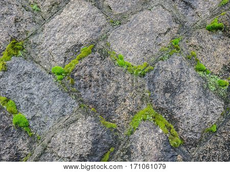 Texture of stone wall with moss background