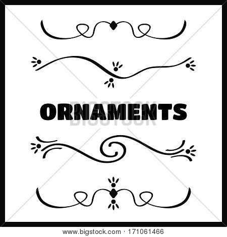 Filigree swirly ornaments. Ornamental caligraphy embellishment vector