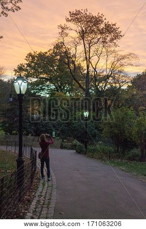 Sunset In Central Park During The Fall