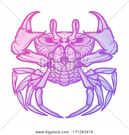 Cancer. Accurate symmetrical drawing of the beach crab. Concept art for tattoo, horoscope, sea food business. Pastel colored. Linear drawing itolated on white background. EPS10 vector