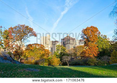 Ny Dyalisis Center From Central Park