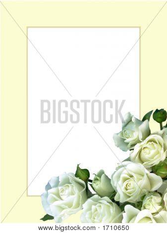 White Roses On Beige Frame