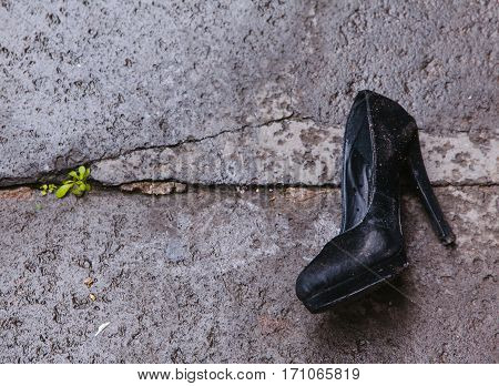 Black women's velvet dirty pump shoe on high heel lost or left on gray asphalt with a green plant coming breaking the ground