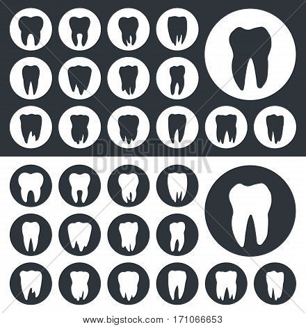 teeth vector icon set, tooth silhouettes closeup
