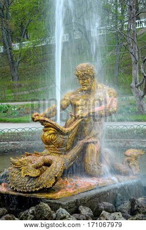 Peterhof, Russia - May 13, 2006: The Samson Fountain. The Samson is the central fountain of The Grand Cascade in The State Museum Preserve Peterhof