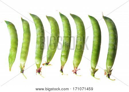 Isolated several pea pods on white background