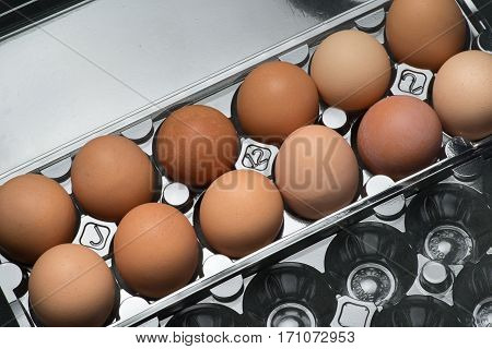 A plastic carton of fresh organic brown free range eggs