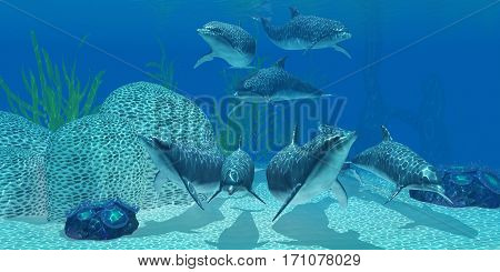 Dolphins Underwater 3d illustration - A pod of Bottlenose dolphins look for their next meal on a coral reef in clear tropical ocean waters.