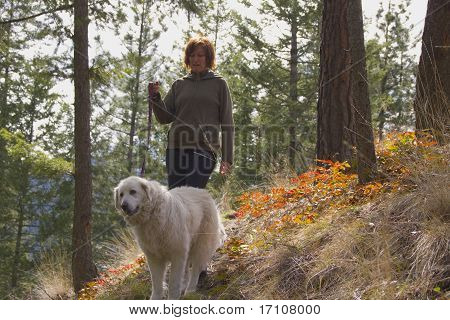 Woman Walking Maremma Dog In The Trees